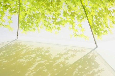 зонт листва2